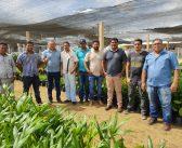 A Equipe de Governo Fez Visita ao Novo Viveiro de Mudas de Ipixuna do Pará